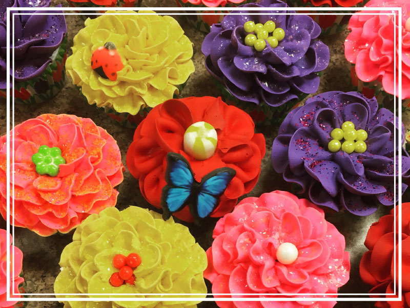 fun-spring-cupcakes-for-front-computer.jpg